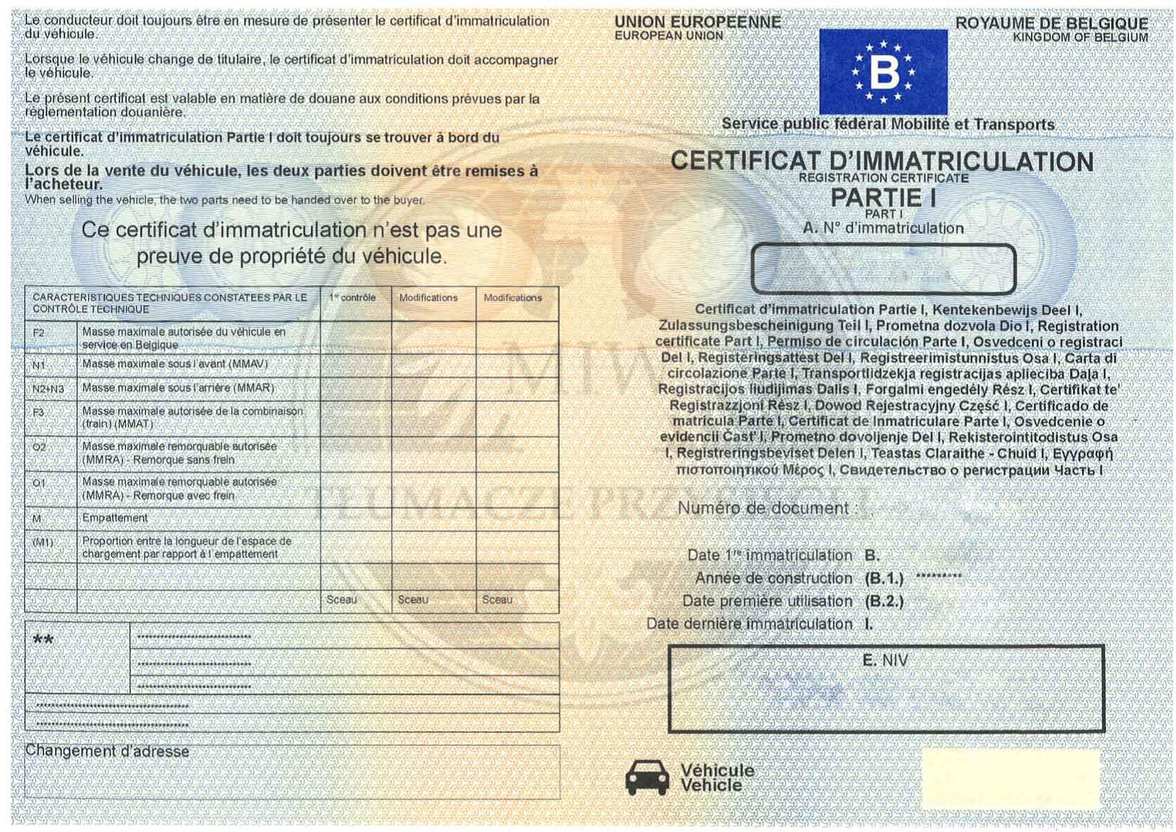 Jakie dokumenty samochodowe tłumaczyć?